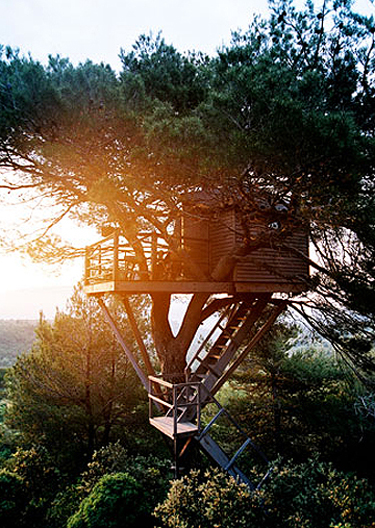 Treehouse_4