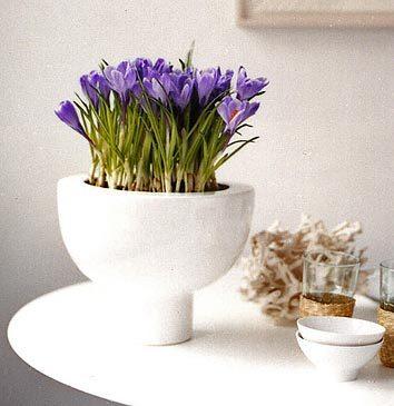 Gasl_flowers_vase_17_3