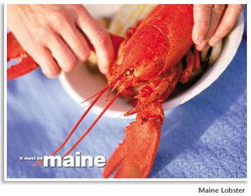 Lg_lobster_2
