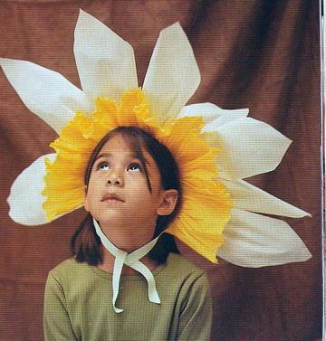Daffodil_5