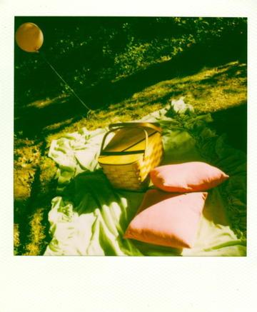 Polaroid_picnic