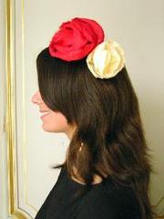 Hair_roses